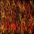 burning_grass_8_photo_slideshow.jpg