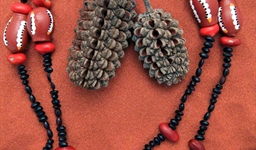 Ininti Seed Necklace (LC0902034)