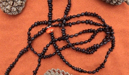Ininti Seed Necklace (LC0903051)