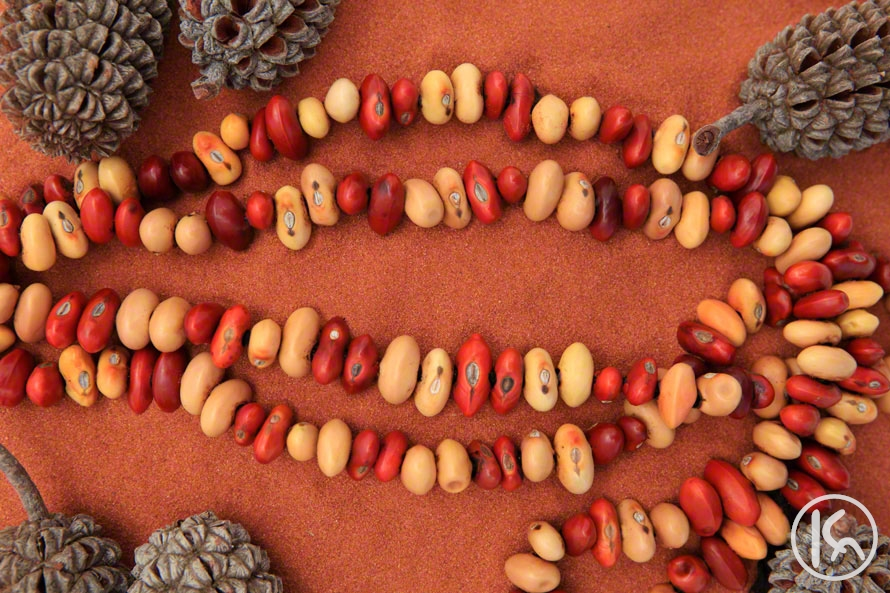 Ininti Seed Necklace (DG0903075)