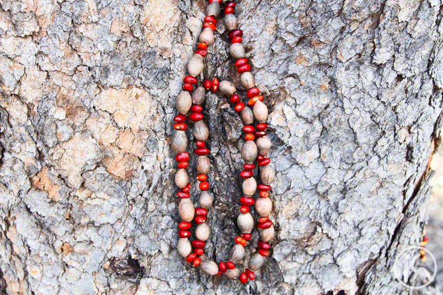 Ininti Seed and Gumnut Necklace (AN12045216), Annie Nelson Napangardi
