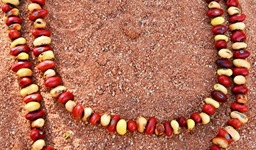 Ininti Seed Necklace (AN12045238)