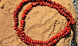 Ininti Seed Necklace (AN12045241)
