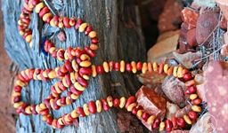 Ininti Seed Necklace (AN12045244)
