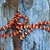 aboriginal_ininti_seed_necklace_27_photo_slideshow.jpg