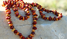 Ininti Seed Necklace (AN12045248)