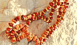 Ininti Seed Necklace (AN12045250)