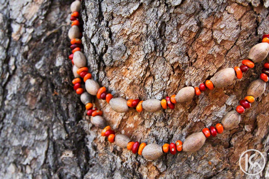 Ininti Seed and Gumnut Necklace (AN12045213), Annie Nelson Napangardi