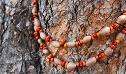 aboriginal_ininti_seed_and_gumnut_necklace_1_photo_slideshow.jpg